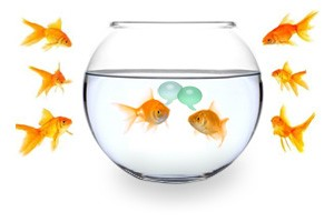 Classroom Practices 2: Fishbowl Discussion